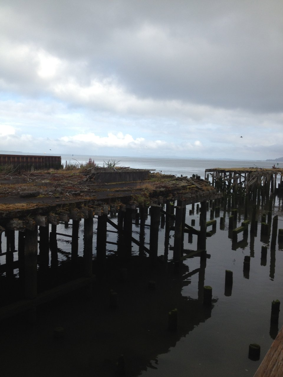 Dock and Pilings