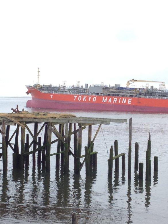 Tokyo Marine Ship